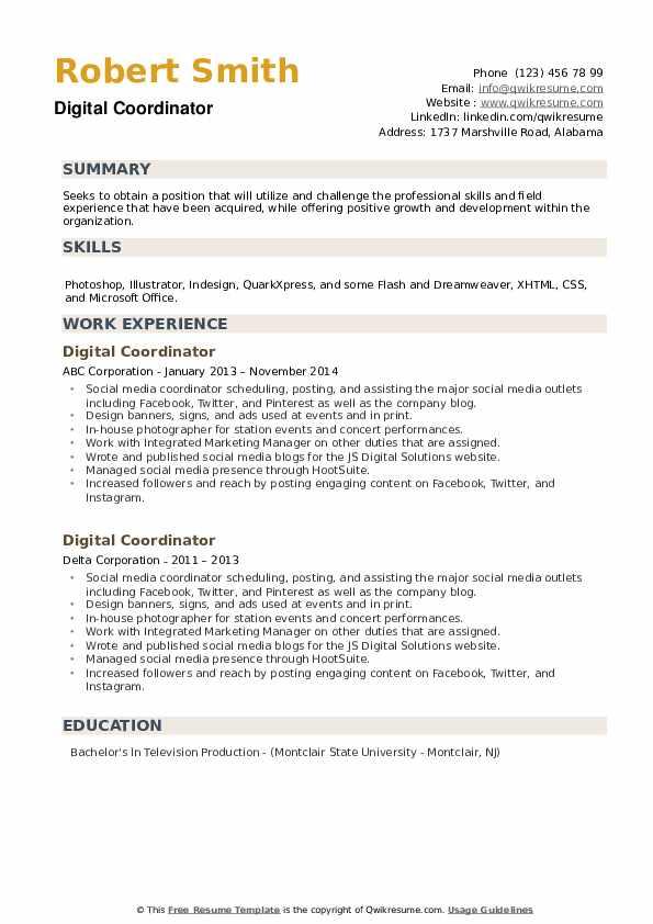 Digital Coordinator Resume example
