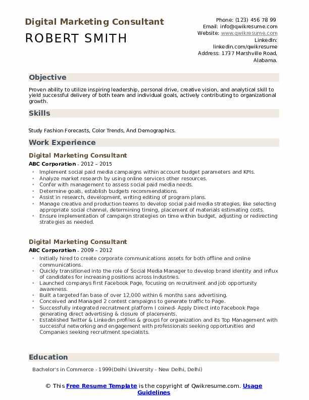 Digital Marketing Consultant Resume example