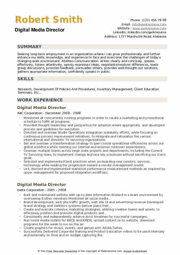 Digital Media Director Resume example