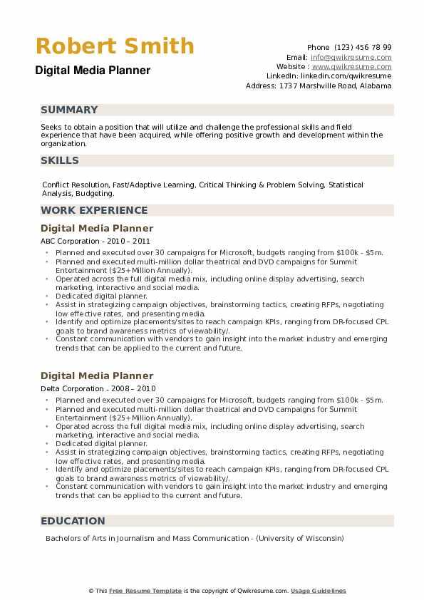 Digital Media Planner Resume example