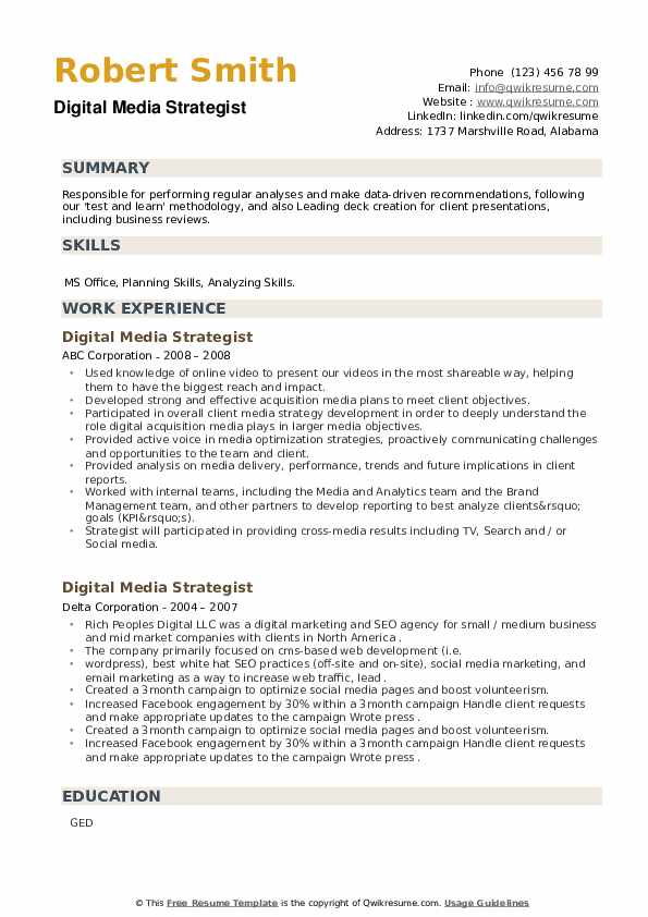 Digital Media Strategist Resume example