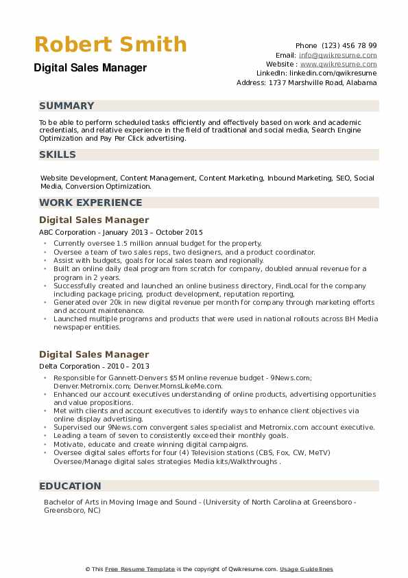 Digital Sales Manager Resume example
