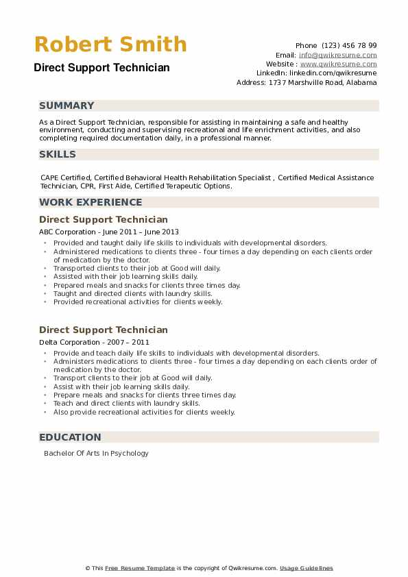 Direct Support Technician Resume example