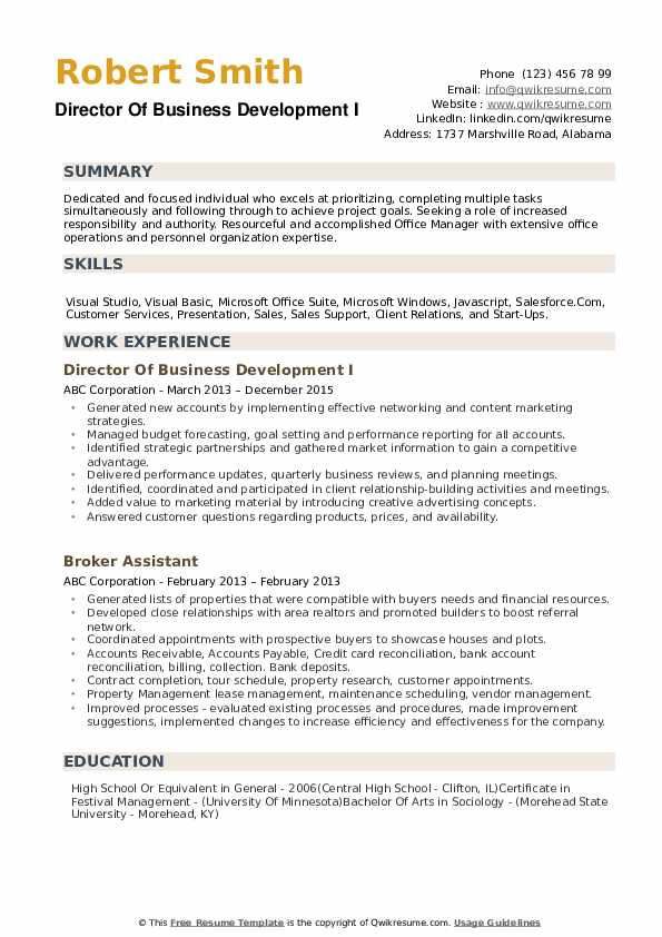Director Of Business Development Resume example