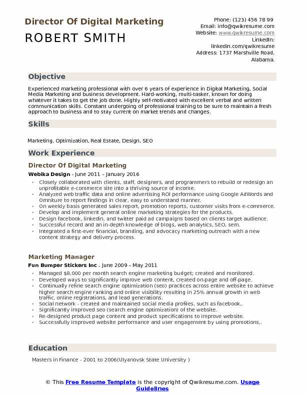 Director Of Digital Marketing Resume Example