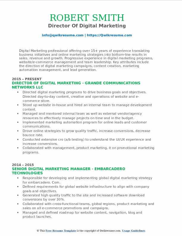 Director Of Digital Marketing Resume Example