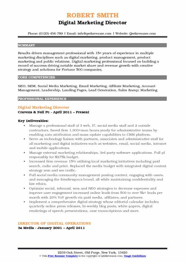 Digital Marketing Director Resume Sample