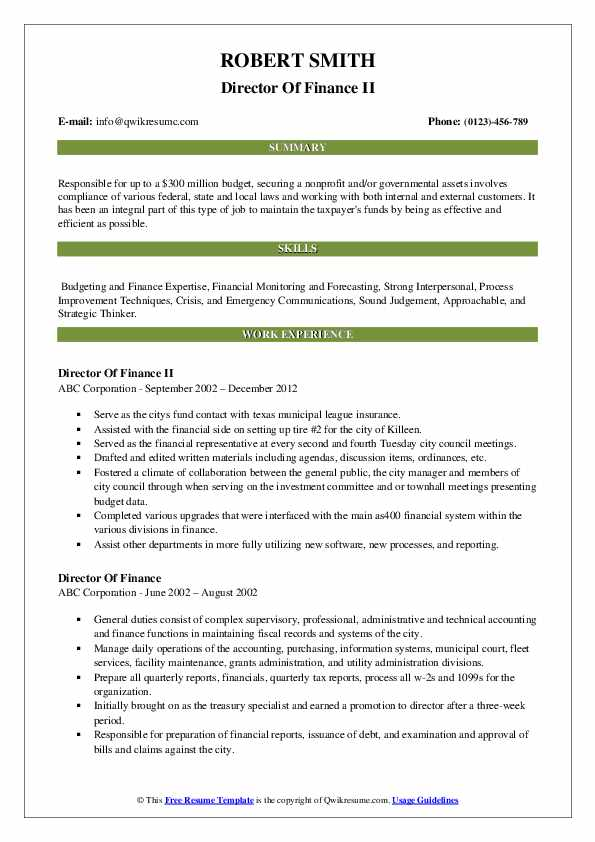 Director Of Finance II Resume Example