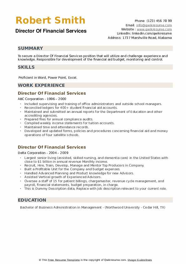 Director Of Financial Services Resume example