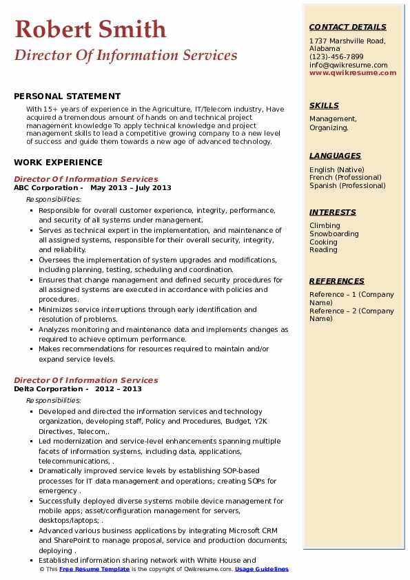 Director Of Information Services Resume example