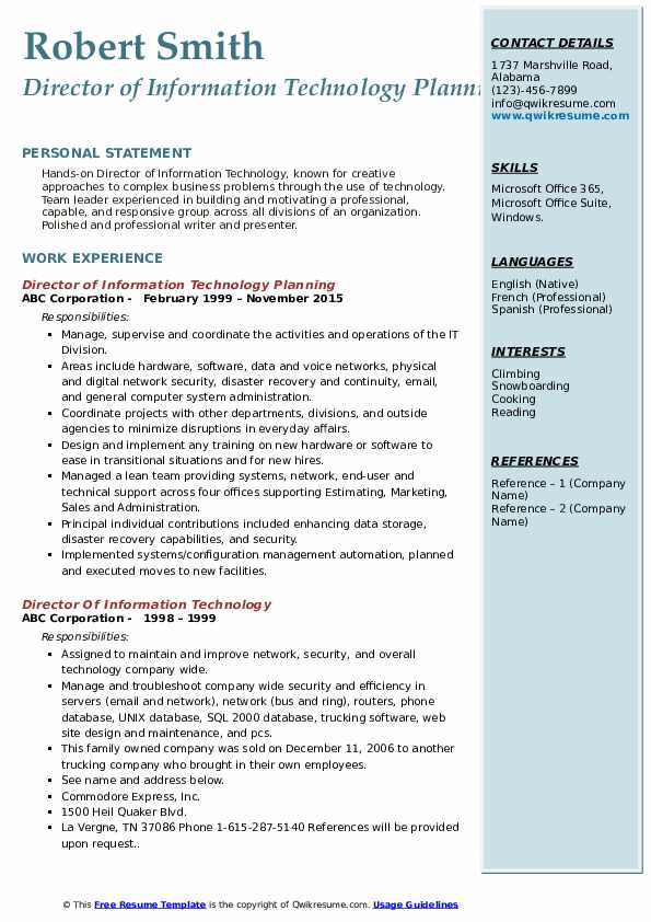 Director of Information Technology Planning Resume Example