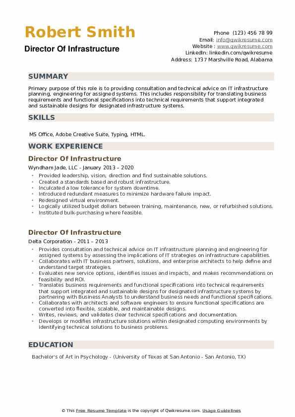 Director Of Infrastructure Resume example