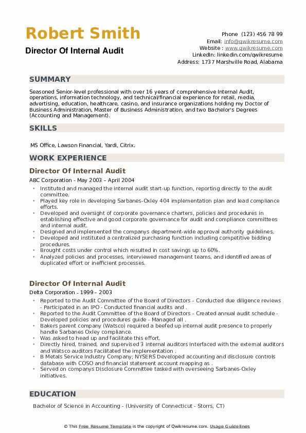 Director Of Internal Audit Resume example