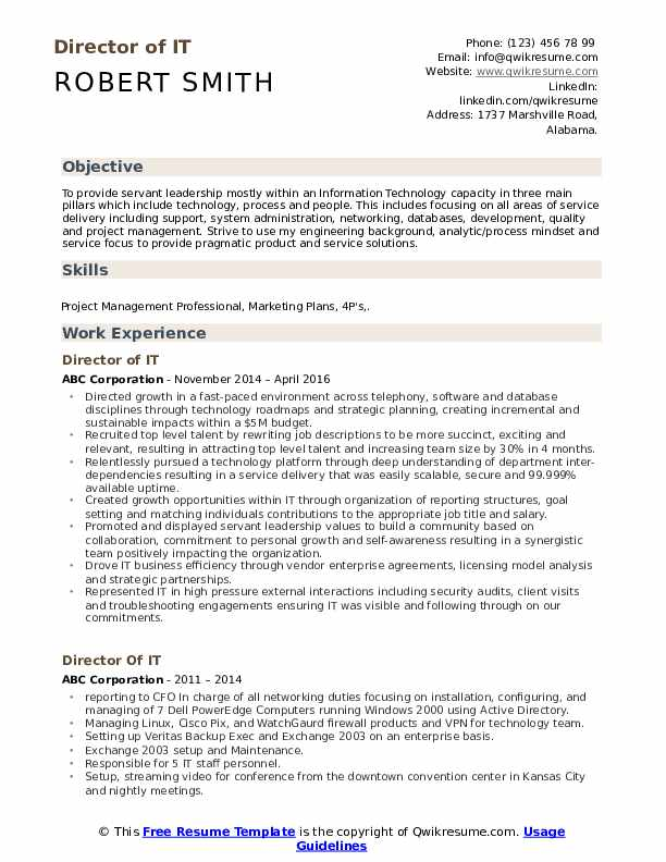 Director of IT Resume Sample
