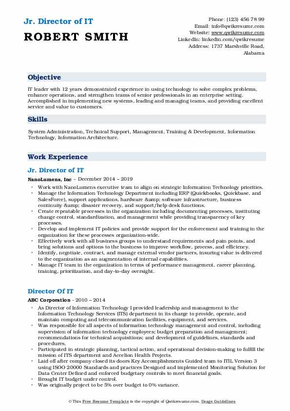 Jr. Director of IT Resume Example