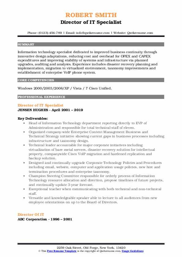 director of it resume samples