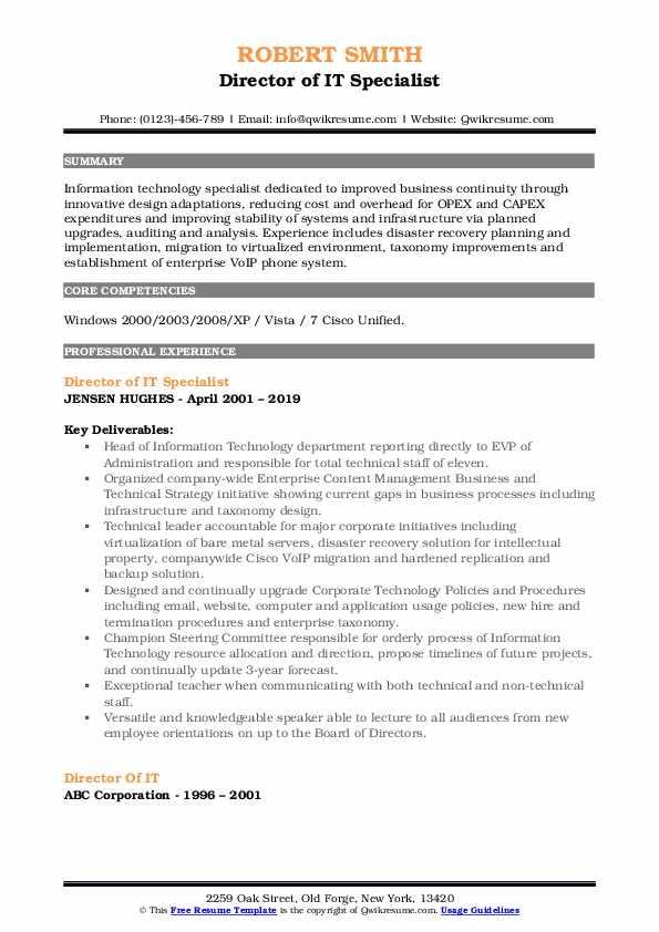 Director of IT Specialist Resume Format