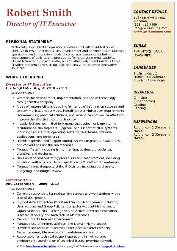 Director of IT Executive Resume Model