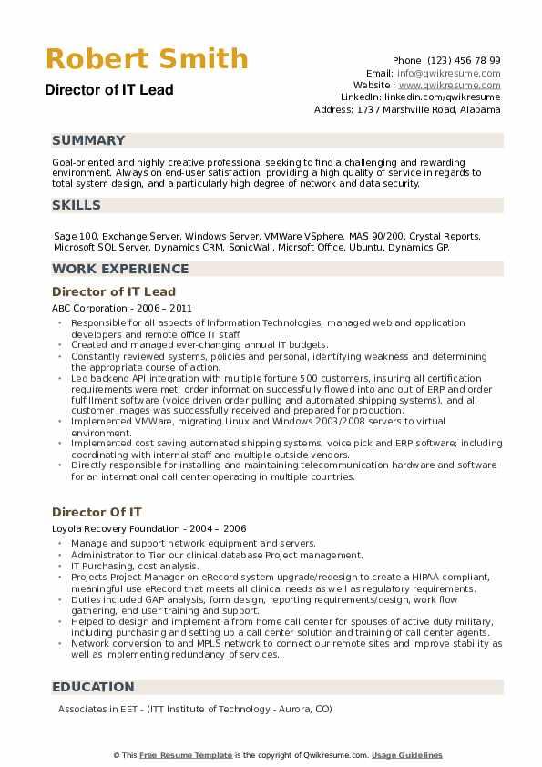 Director of IT Lead Resume Model