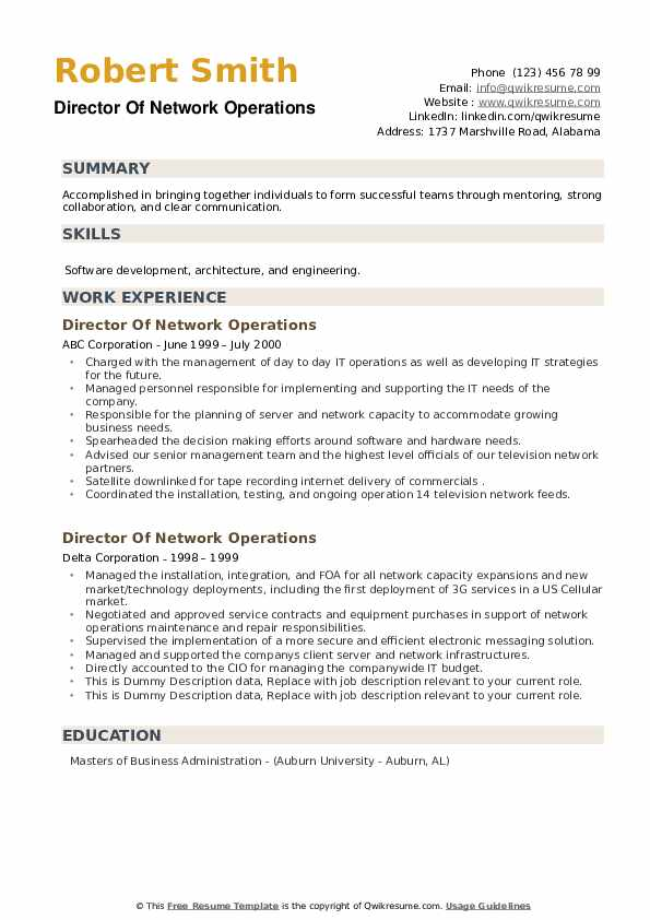 Director Of Network Operations Resume example