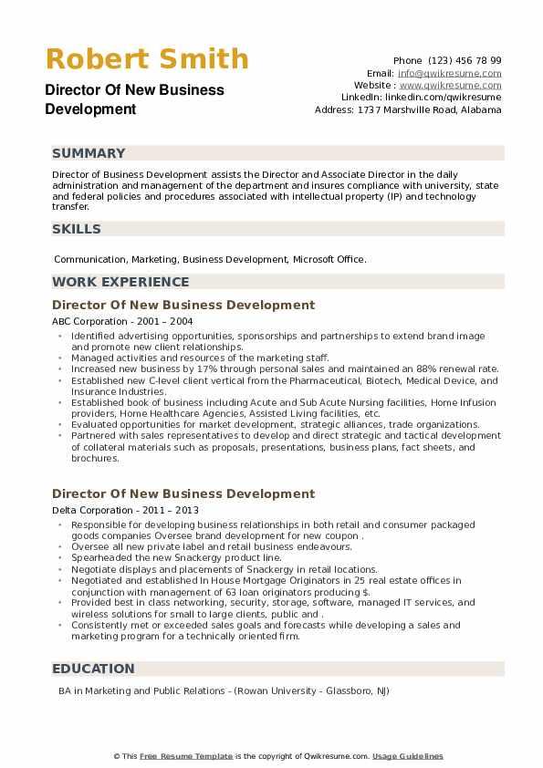 Director Of New Business Development Resume example