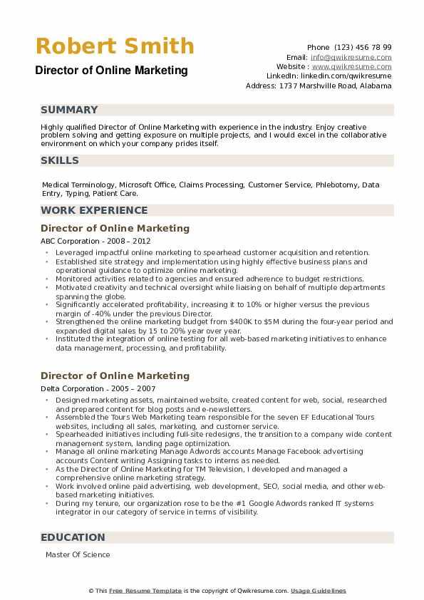 Director of Online Marketing Resume example