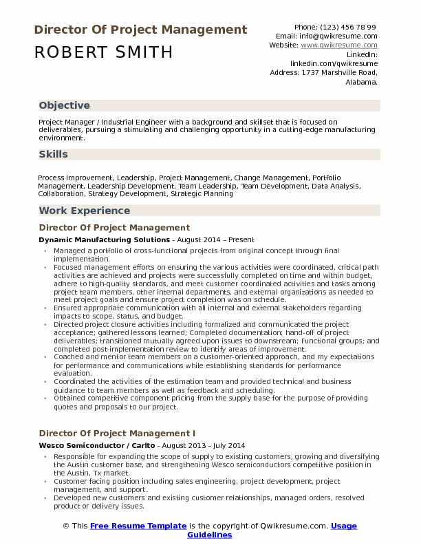 Director Of Project Management Resume Format