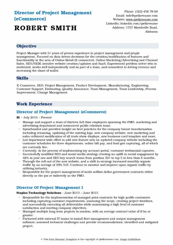 Director of Project Management (eCommerce) Resume Template