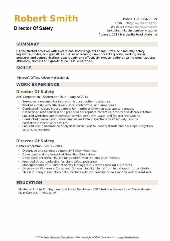 Director Of Safety Resume example