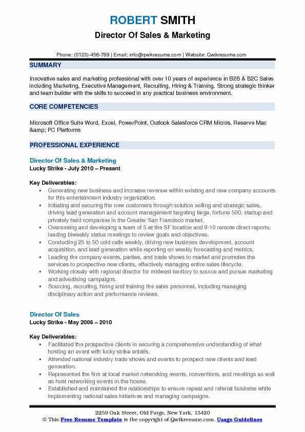 Director Of Sales & Marketing Resume Template