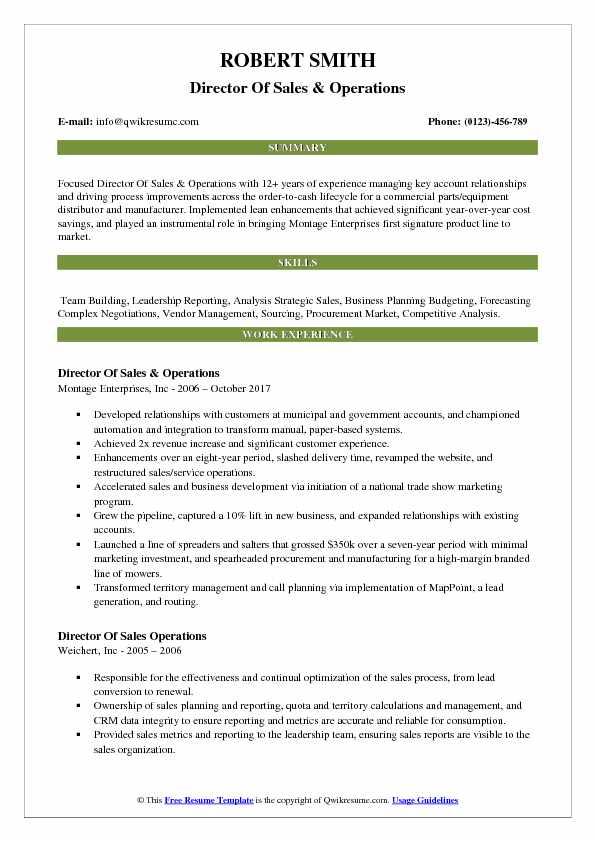 Director Of Sales & Operations Resume Format