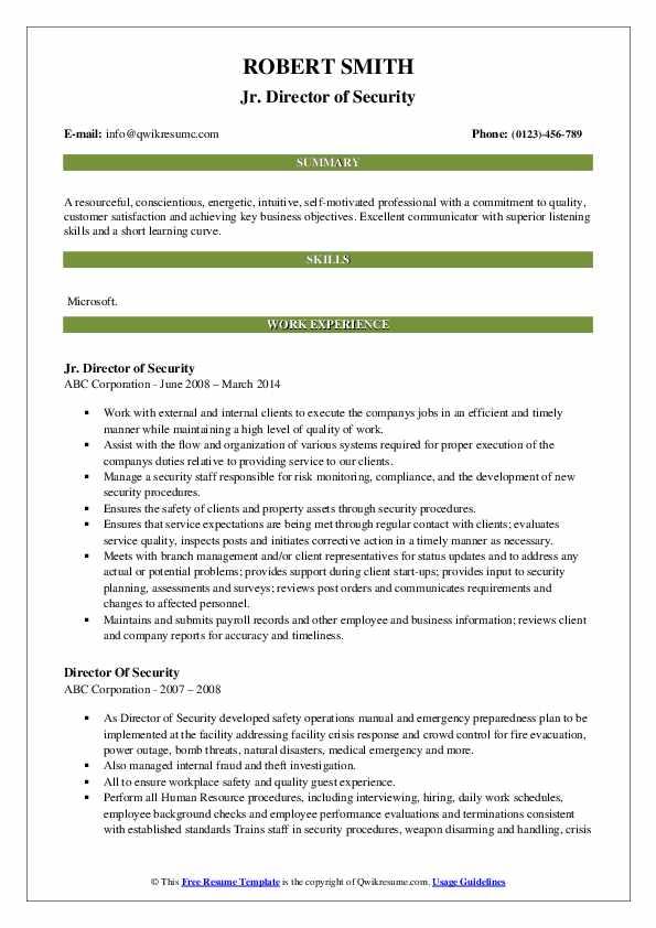 Jr. Director of Security Resume Model