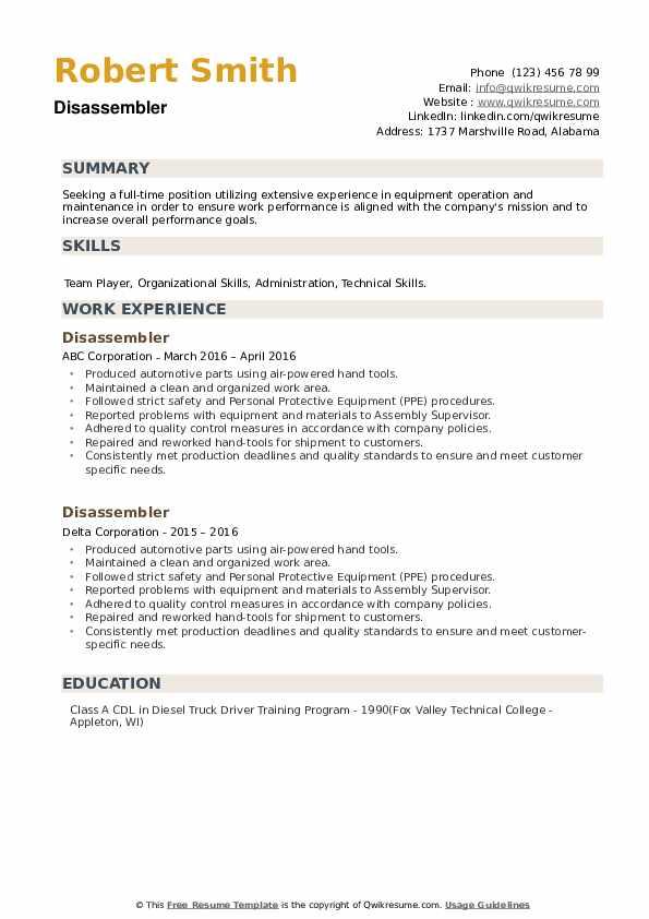 Disassembler Resume example