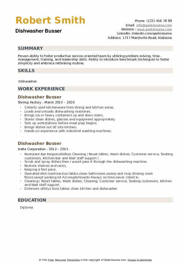 Dishwasher Busser Resume example