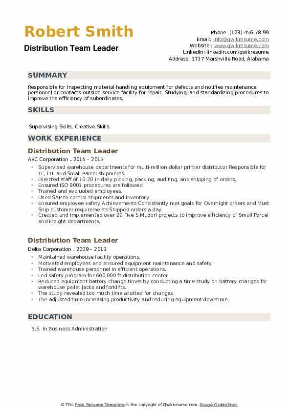Distribution Team Leader Resume example