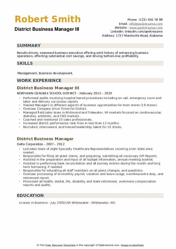 District Business Manager Resume example