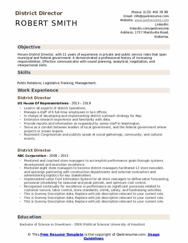 District Director Resume example