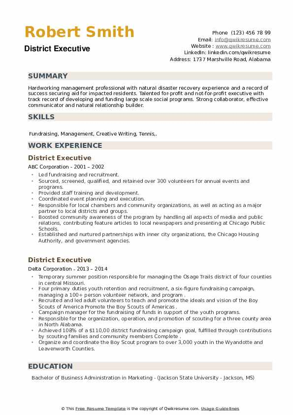 District Executive Resume example