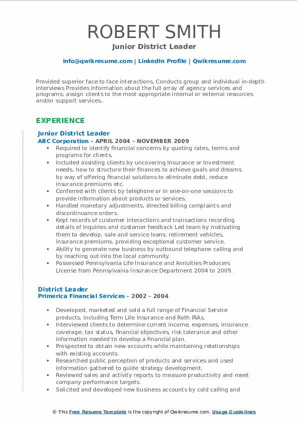 Junior District Leader Resume Format