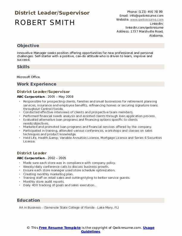 District Leader/Supervisor Resume Sample