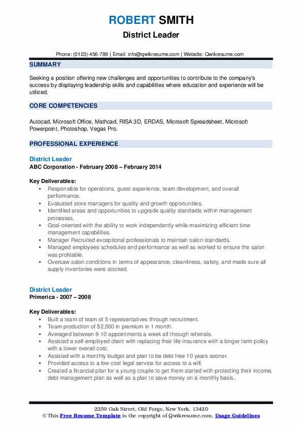 District Leader Resume example