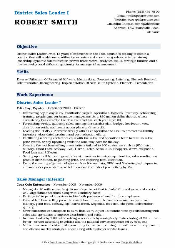 District Sales Leader I Resume Template