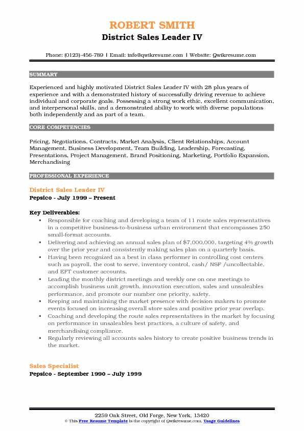 district sales leader resume samples