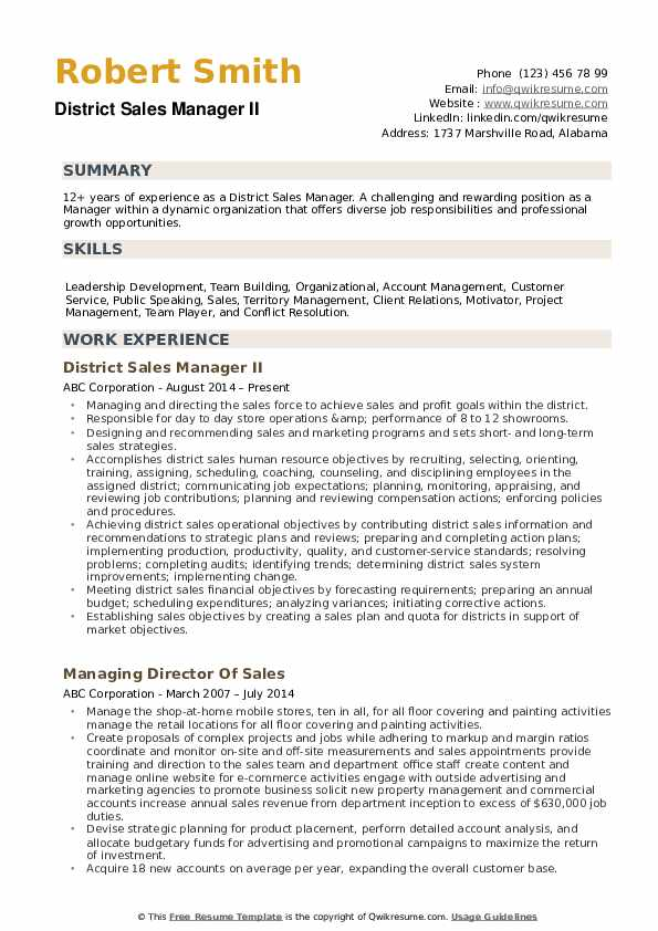 District Sales Manager Resume example