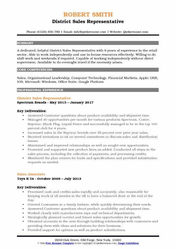 District Sales Representative Resume Model