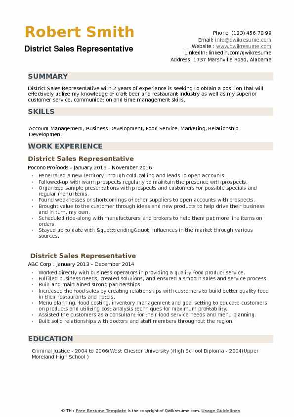 District Sales Representative Resume Example