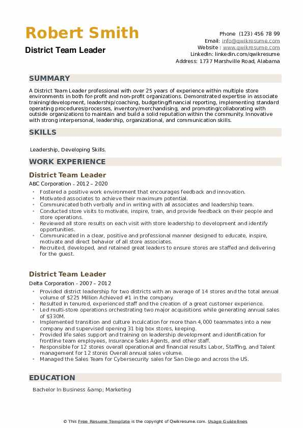 District Team Leader Resume example