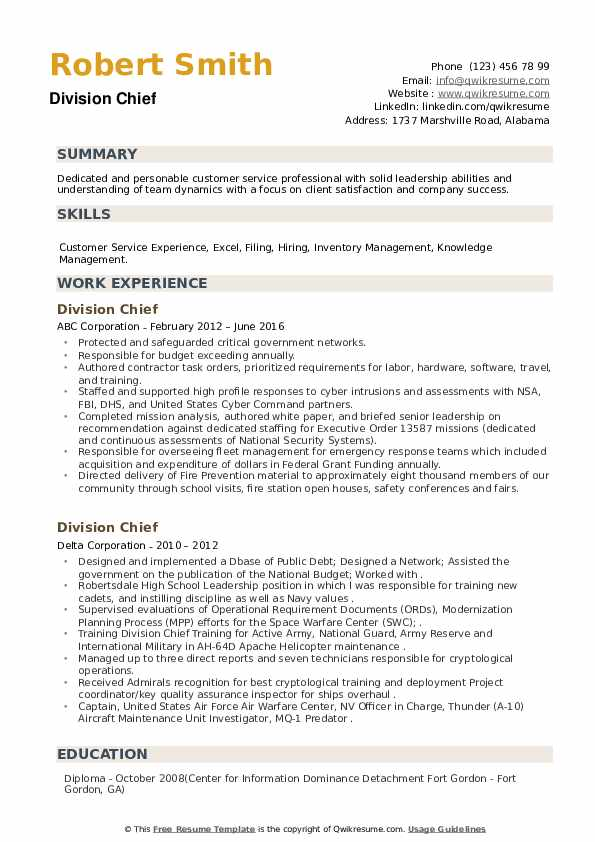 Division Chief Resume example