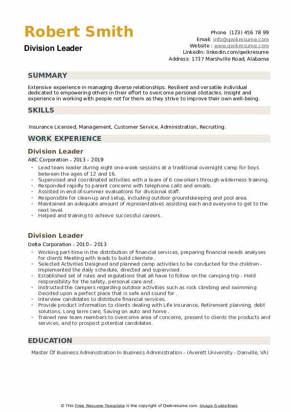 Division Leader Resume example