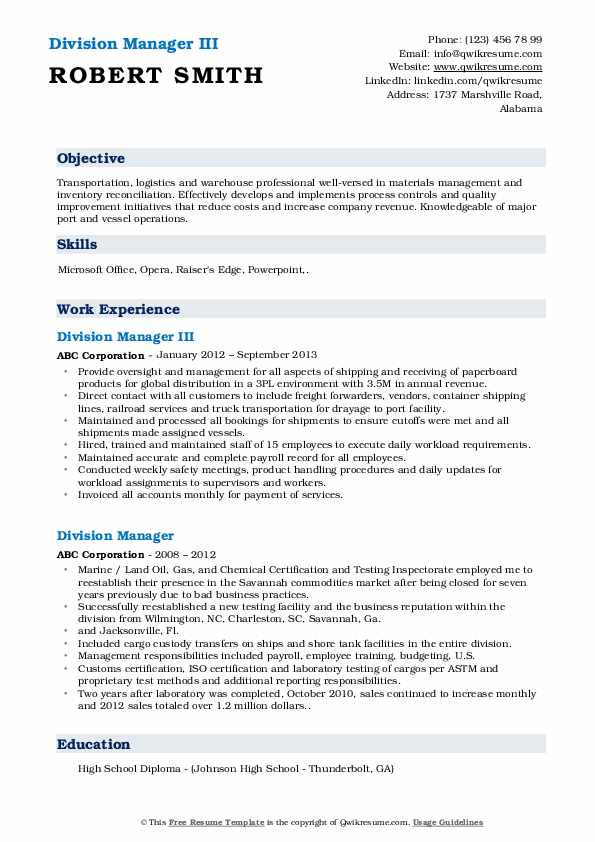 Division Manager III Resume Template